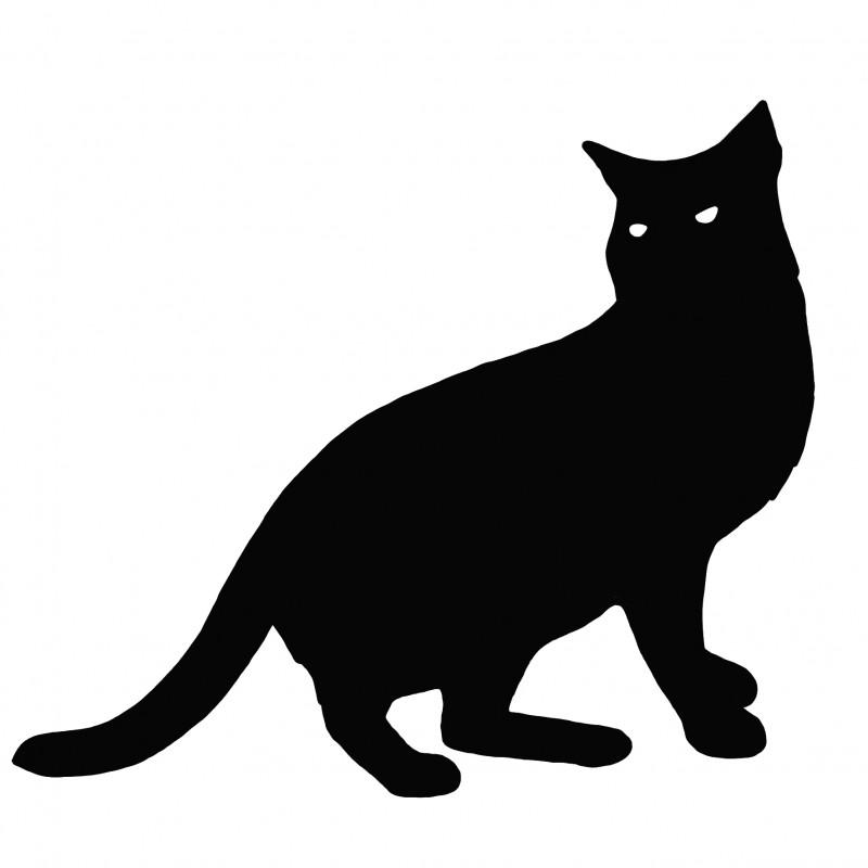 Все о кошках - allaboutcats.ru, Ленинградский проспект, 24